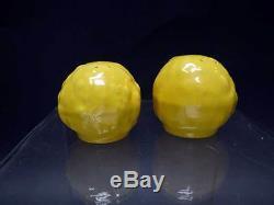 Catalina Island Gourd Salt & Pepper set Mandarin Yellow