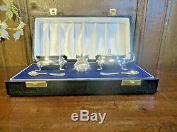 EXCELLENT BOXED hallmarked SILVER CRUET/SALT/PEPPER/MUSTARD/SPOONS SET 1959 160g